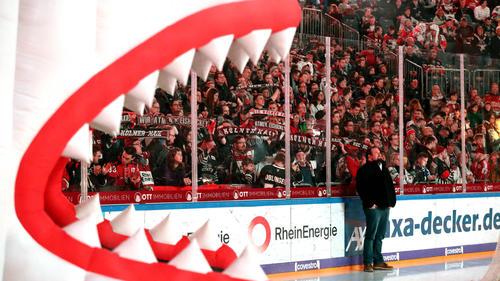 Weitere Coronainfektion bei den Kölner Haien