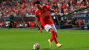 Darwin Nunez steht offenbar beim FC Bayern auf dem Zettel