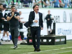 Bruno Labbadia ist der Trainer des VfL Wolfsburg
