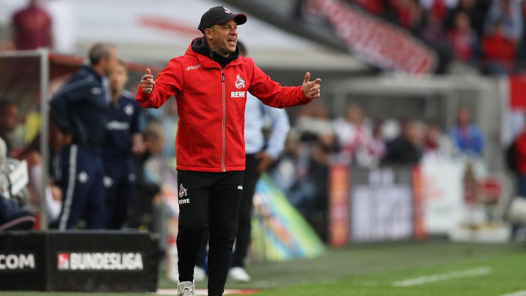 Übernimmt Markus Anfang den Trainerjob bei Hannover 96?