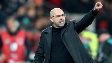Peter Bosz kehrt mit Bayer Leverkusen zum BVB zurück