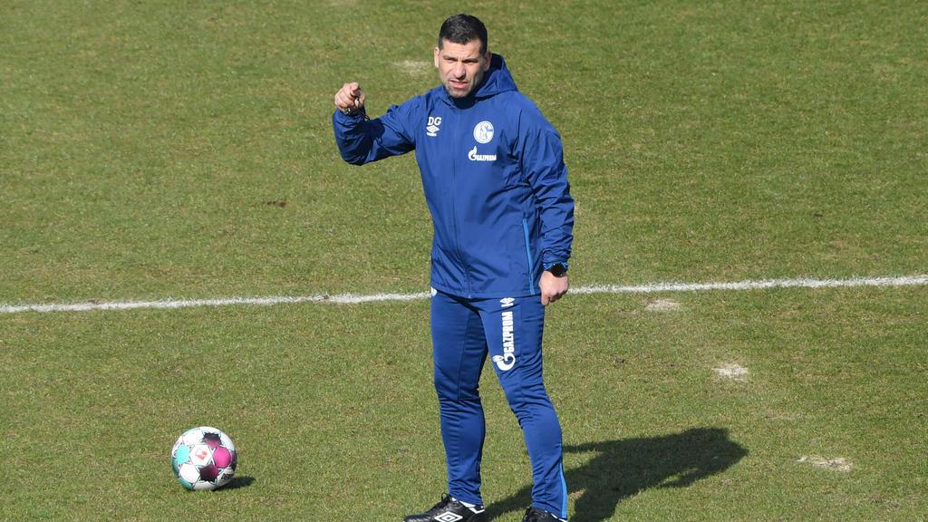 Dimitrios Grammozis coacht seit vergangener Woche den FC Schalke 04