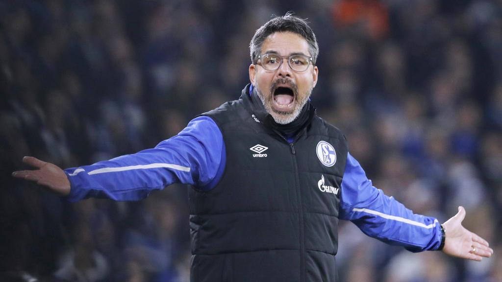 Schalke-Coach David Wagner übt scharfe Kritik am Videobeweis
