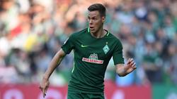Niklas Moisander bleibt Werder Bremen treu