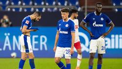 Corona-Alarm auf Schalke: Ein Spieler aus aus dem Profikader wurde positiv auf Covid-19 getestet