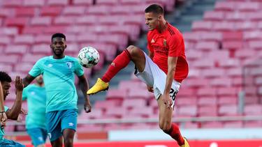 Julian Weigl und Benfica haben die CL-Quali verpasst