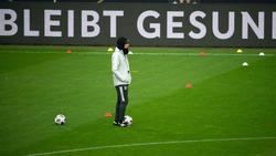 Joachim Löw spielt mit seiner DFB-Auswahl am Samstag in der Ukraine