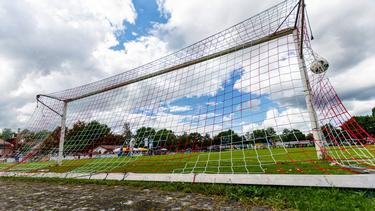 Der VfB Friedrichshafen wird ausgezeichnet