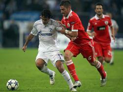 Nichts zu holen auf Schalke