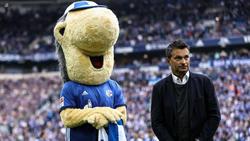 Beim FC Schalke 04 klingelt die Kasse