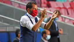 Champions League: Salihamidzic freut sich aufs Endspiel