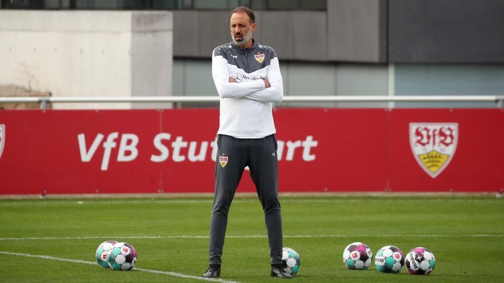 Mit dem VfB Stuttgart beim FC Schalke zu Gast: Pellegrino Matarazzo