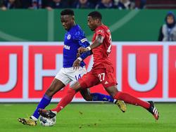 Gegen Abwehrbollwerk Alaba taten sich die Schalker schwer