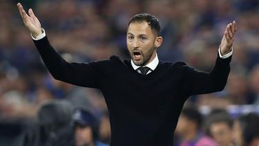Domenico Tedesco erreichte mit Schalke nur ein Remis