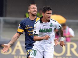 Diego Farias, attaccante di proprietà del Chievo Verona