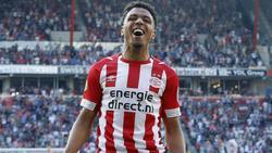 Donyell Malen mit Fünferpack in der Eredivisie