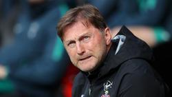 Ralph Hasenhüttl ist seit Dezember Trainer in Southampton
