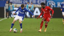 Der FC Bayern setzte sich klar gegen den FC Schalke 04 durch