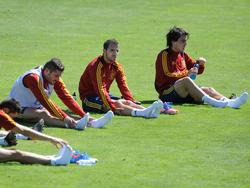 """Die """"Selección"""" während der Vorbereitung auf die EM 2012"""