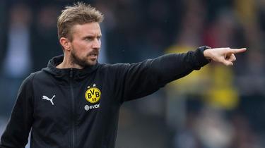 BVB-Erfoglstrainer Hoffmann wechselt nach Mainz