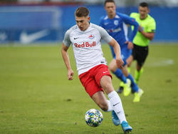 Salzburgs U19 trifft im Youth-League-Playoff auf Porto