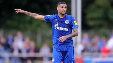 Der FC Schalke verlor das Freundschaftsspiel gegen Viktoria Köln