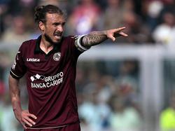 Paulinho, attaccante del Livorno