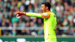 Pavlenka hütet gegen den 1. FC Nürnberg das Tor der Bremer