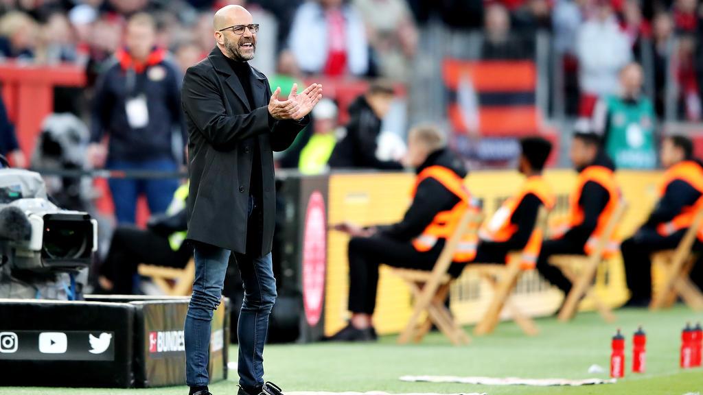 Peter Bosz ist mit Bayer Leverkusen in der Erfolgsspur