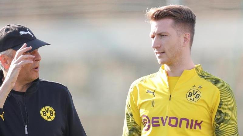 Stellt BVB-Coach Lucien Favre (l.) ein gutes Zeugnis aus: Kapitän Marco Reus