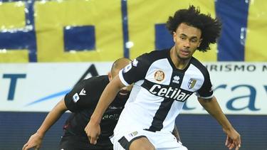 Weg vom FC Bayern, jetzt bei Parma Calcio: Joshua Zirkzee