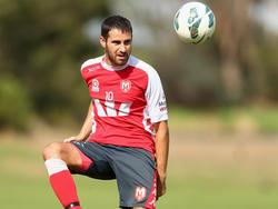 In der A-League erzielte Josip Tadić für Melbourne in 22 Einsätze sechs Tore