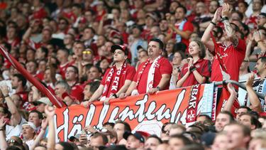 Neuer ehrenamtlicher Vorstand beim 1. FC Kaiserslautern