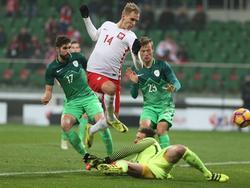 Teodorczyk rettet Polen das Unentschieden