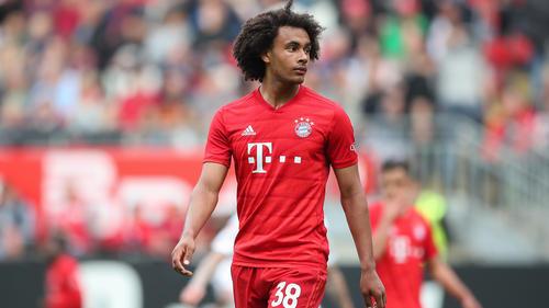 Joshua Zirkzee hat beim FC Bayern verlängert