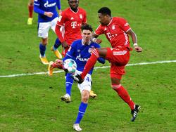 Alaba-Tor gegen Schalke