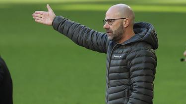 Peter Bosz braucht ein Erfolgserlebnis mit Bayer Leverkusen