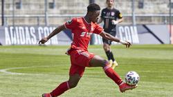 Christopher Scott könnte bald eine größere Rolle beim FC Bayern spielen