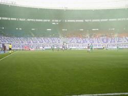 Austria-Transparent im Derby