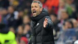 Marco Rose könnte schon bald in der Bundesliga coachen