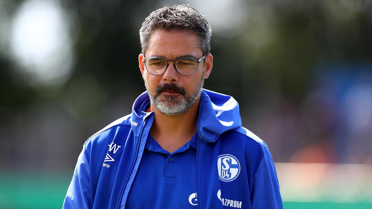 David Wagner steht beim FC Schalke 04 vor einer großen Herausforderung