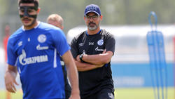 David Wagner hat in Transfer-Fragen bei Schalke nur ein Drittel zu sagen