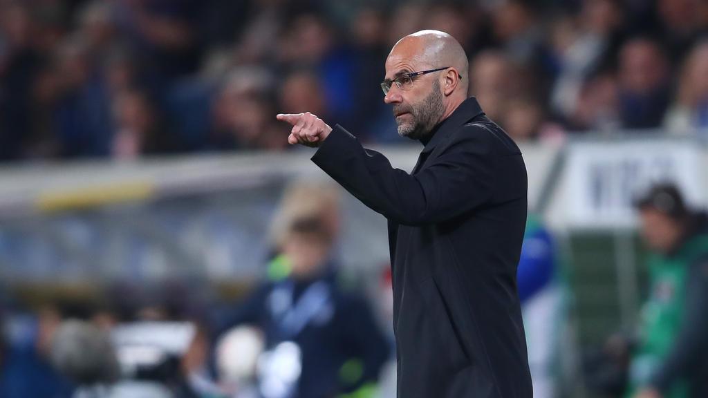 Peter Bosz will Bayer Leverkusen erneut in die Champions League führen