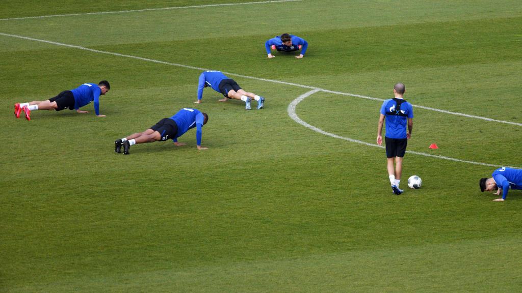 Zahlreiche Schalke-Profis sind nach der Corona-Pause wieder einsatzbereit