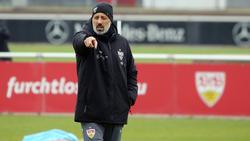 Pellegrino Matarazzo trifft mit dem VfB Stuttgart auf den FC Bayern