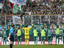 Grün-weißer Jubel nach dem Sieg in Salzburg