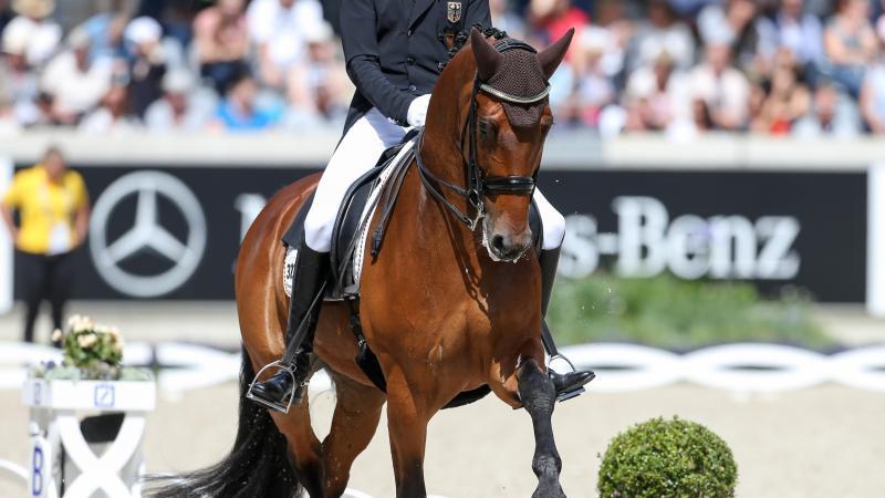 Das Dressurpferd Cosmo gewann mit Sönke Rothenberger Olympia-Gold