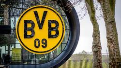 Der BVB überrascht seine Fans