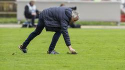 Mirko Slomka ist der neue Trainer bei Hannover 96