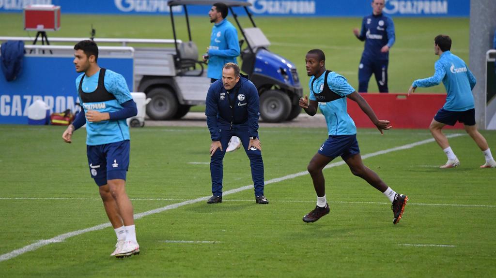 Manuel Baum hat mit der Arbeit beim FC Schalke 04 begonnen